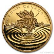 Zlatá mince Maple leaf Reflections 2015-proof