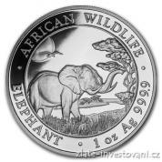 Investiční stříbrná mince somálský slon 2019
