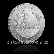 Investiční stříbrná mince bizon 2013