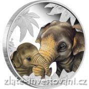 Stříbrná mince Mateřská láska-proof verze