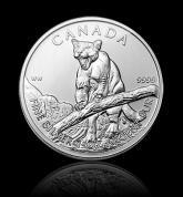 Investiční stříbrná mince kanadská Puma 2012